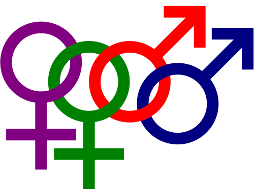 Sexual Orientation Questions Answered